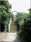 TQ7809 : Steps to footbridge over railway near West St Leonards by Patrick Roper
