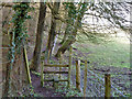 TQ3855 : Stile on footpath to Woldingham by Robin Webster