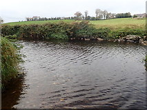 J2333 : The upper Bann at the Ballynagappoge Road Ford by Eric Jones