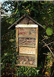 SX9265 : Bug hotel, St Marychurch by Derek Harper