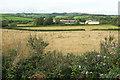 SX8659 : Fields near Yalberton by Derek Harper