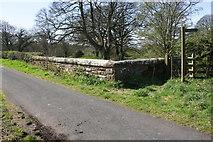 NX9921 : Barngill Bridge over Lowca Beck by Roger Templeman