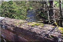 NX9921 : Lowca Beck viewed over eastern parapet of Barngill Bridge by Roger Templeman