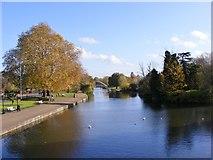 TL0549 : Bridge View by Gordon Griffiths