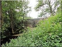 NZ1752 : The stone bridge at Harperley by Robert Graham