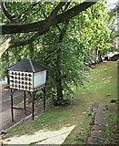 SJ4066 : Frodsham Street Vicinity, Chester by David Hallam-Jones