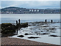 NO4127 : Newport-on-Tay shoreline by Mat Fascione