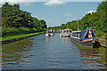 SK5221 : Grand Union Canal in Loughborough, Leicestershire by Roger  Kidd