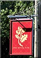SU8033 : The Royal Oak Pub Sign by John P Reeves