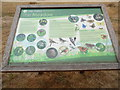 SU9997 : Information Board in Little Chalfont Nature Park (2) by David Hillas