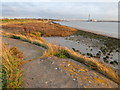 TQ5478 : Old river defences at Purfleet by Marathon