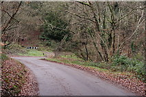 TQ1450 : Ranmore Common Road by Peter Trimming