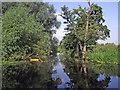 SK4924 : River Soar and the Devil's Elbow near Sutton Bonington by Roger  Kidd