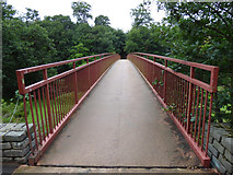 NS3421 : Craigholm footbridge over the River Ayr by Thomas Nugent
