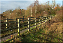 SX9066 : Footbridge, Nightingale Park by Derek Harper