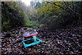 SO6308 : Stroller, fly tipped by John Winder