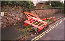 SX9065 : Barriers around tree stump, Parkhurst Road, Torquay by Derek Harper