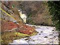 SD6974 : River Twiss, Thornton Glen by David Dixon