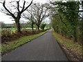 ST9891 : Road on Flisteridge Hill by Philip Halling