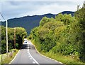 V6665 : Ring of Kerry by N Chadwick
