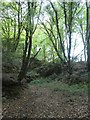 SX0862 : Former quarry in Ford Plantation, Lanhydrock estate by David Smith