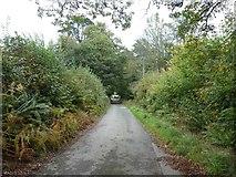 SX1061 : Track above Restormel Farm by David Smith