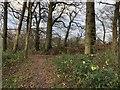 SU9122 : Track Junction by Chris Thomas-Atkin