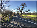 SD5869 : A683 near Hornby by David Dixon