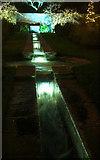 SX9050 : Rill garden, Coleton Aglow by Derek Harper