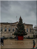 SJ9223 : Stafford Town Centre Christmas Tree by Brian Deegan