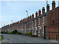 SJ4913 : Primrose Terrace, St Michael's Street, Shrewsbury by Stephen Richards