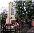ST1195 : Nelson War Memorial by Jaggery