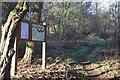 NT0337 : Little Mitchellwood, Biggar by Jim Barton