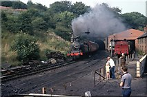 NZ8204 : Engine shed on the NYMR by Martin Richard Phelan