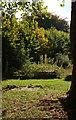 ST5773 : St Andrew's churchyard, Bristol by Derek Harper