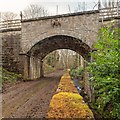 NH5963 : Railway bridge over the Foulis Burn by valenta