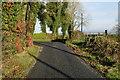 H4662 : Kilgort Road by Kenneth  Allen