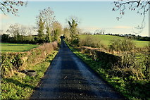 H4662 : Small bridge along Freughmore Road by Kenneth  Allen