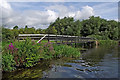 SK1715 : Towpath walkway south-east of Alrewas in Staffordshire by Roger  Kidd