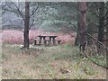 TL9392 : Picnic table by David Pashley