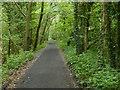 TA0196 : Cinder Track at Newlands Dale by Mat Fascione