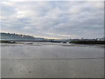 TM2850 : Melton: Deben mud by John Sutton
