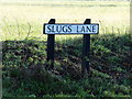 TM4897 : Slugs Lane sign by Adrian Cable