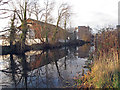TL7106 : Part of the Chelmer and Blackwater Navigation, Chelmsford by Roger Jones