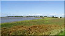 SD3642 : Wyre Estuary, S of Hambleton by Colin Park
