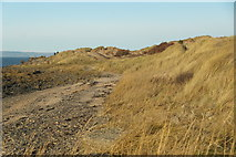NT4884 : Dunes at Black Rocks, Gullane Bay by Mike Pennington