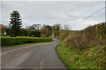 H5956 : Glenhoy Road, Cleanally / Broomhill by Kenneth  Allen