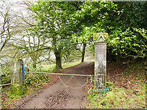SJ9359 : Cliffe Park Hall, gateposts by Stephen Craven