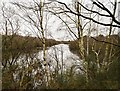 SK9468 : One of Swanholme Lakes by Julian P Guffogg
