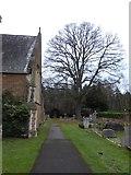 TQ0165 : Holy Trinity, Lyne: churchyard (IV) by Basher Eyre